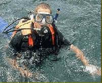 divingmarcel
