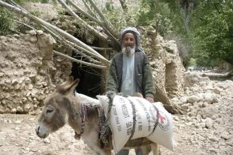 old-man-fariab