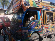 haiti-pictures-from-expats-437